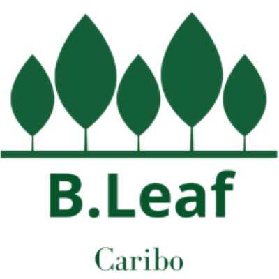 B Leaf Caribo
