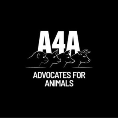 Gruppenlogo von A4A: St. Gallen