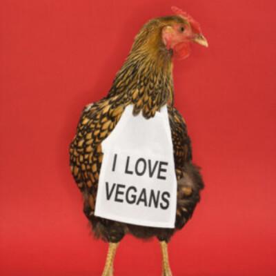 Gruppenlogo von Vegane Singles